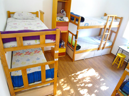 3Dogs Hostel: 6Bedded Dormitory