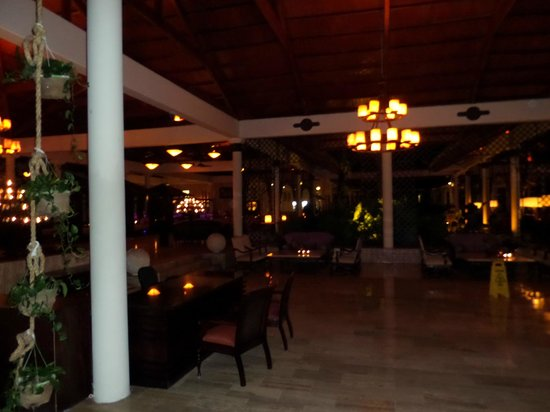 Paradisus Punta Cana: hotel and grounds