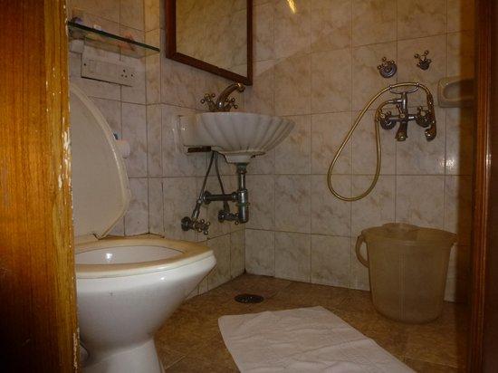 Hotel Alka Premier: The bathroom