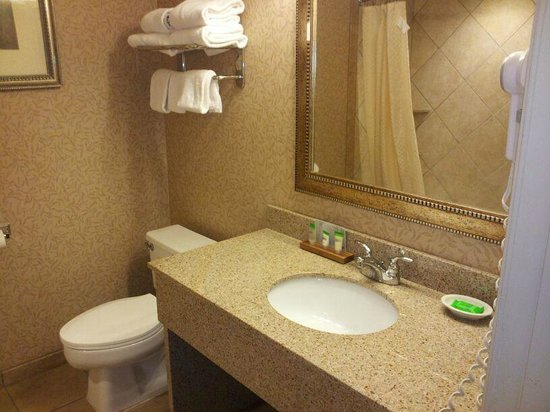 "Red Lion Hotel Coos Bay: BIG, newly rennovated bathroom, with the unfortunate ""low toilet"""