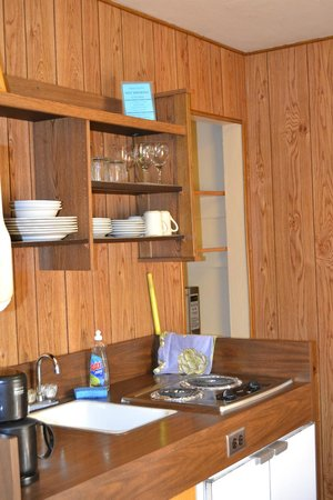 Buckeye Tree Lodge: kitchenette
