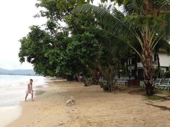 Panwa Beach Resort, Phuket: The private beach
