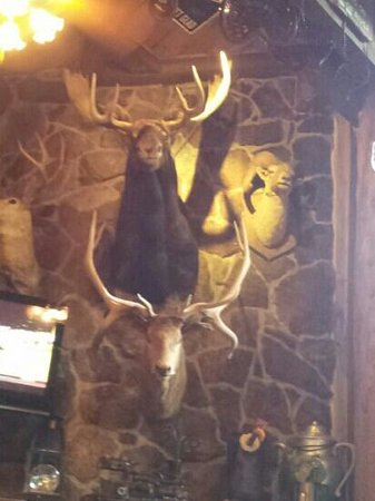 Mangy Moose Restaurant and Saloon: The Mangy Moose.