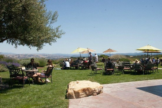 Calcareous Vineyard: Beautiful grounds