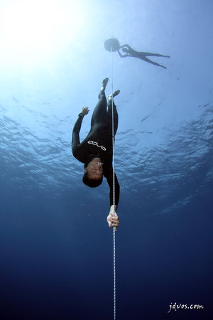 Blue Immersion Freediving