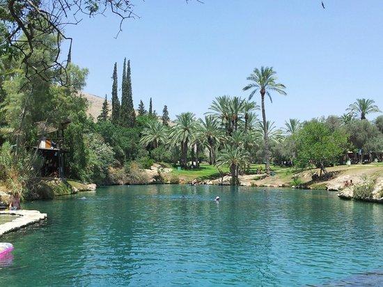 Gan HaShlosha National Park: The upper pool