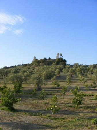 Azienda Agricola Busulmona: Outside view of the farm
