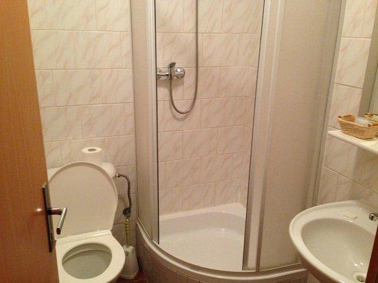 Hotel Faust : Bath room