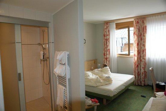 Landzeit Tauernalm: The room