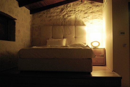 Exensian Villas & Suites: La habitación