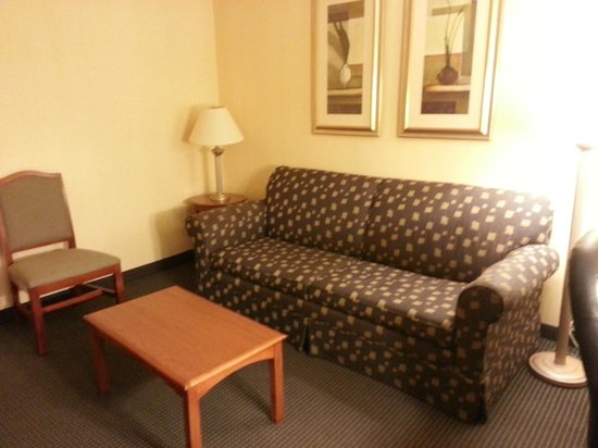 Holiday Inn Express Buffalo Airport: lounge in suite