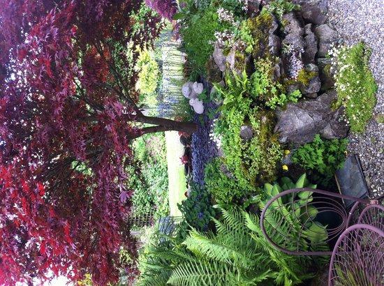 Dufton House Bed & Breakfast: Garden views