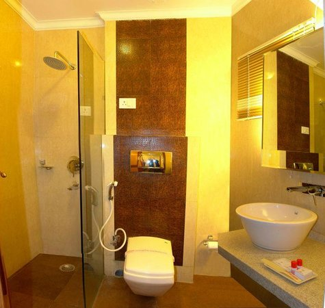 Hotel Singh International: WASHROOM/BATHROOM