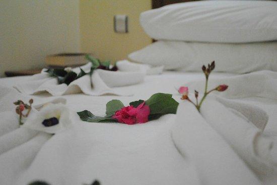 写真Milkyway Apart & Hotels枚