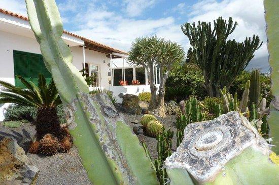 La Luna Baila: Have og hus