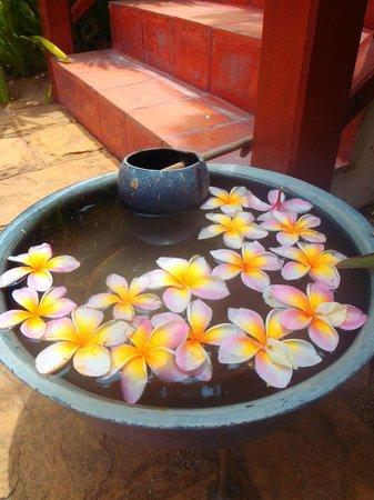 ร็อคกี้ บูติค รีสอร์ท: Beautiful flowers changed everyday we were there