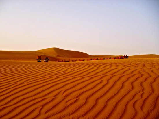 Qasr Al Sarab Desert Resort by Anantara: Camel Sunset Trek