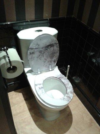 Castle Hotel: Toilet