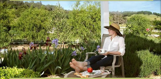 Pilot Hill, CA: Relax, unwind and renew!