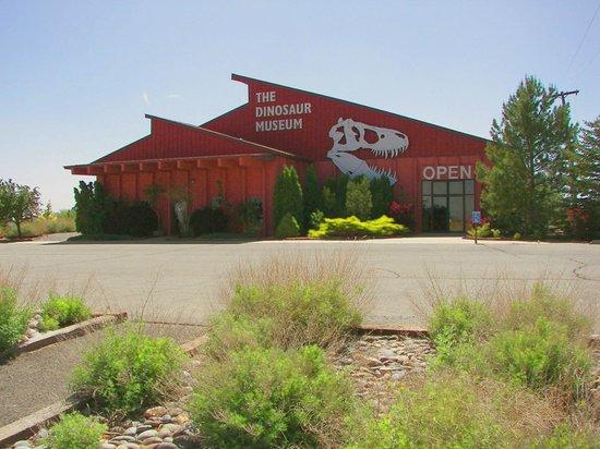 The Dinosaur Museum: Dinosaur Museum