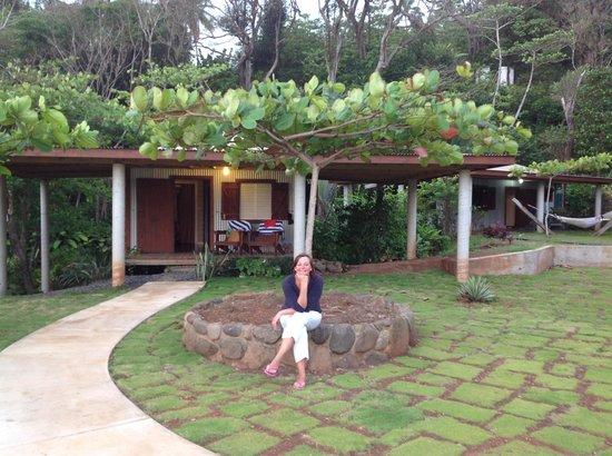 Pagua Bay House Oceanfront Cabanas: Mandelbaum  und Bungalow