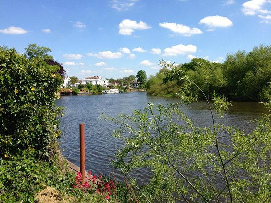 Red Lion: The River View