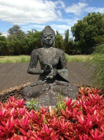 Lumeria Maui Retreat: om tare tuttare