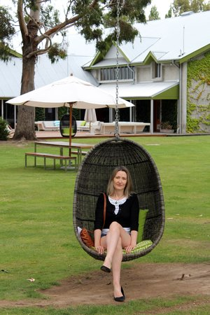 Cloudy Bay: Hanging chairs in the gardens