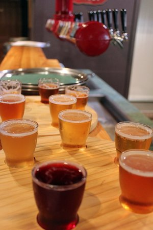 Dodson Street Beer Garden: Craft ale tasting trays for NZD$5