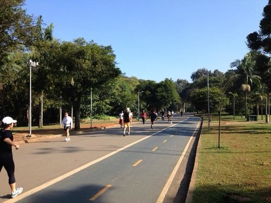 Parque do Ibirapuera: Jogging Trail