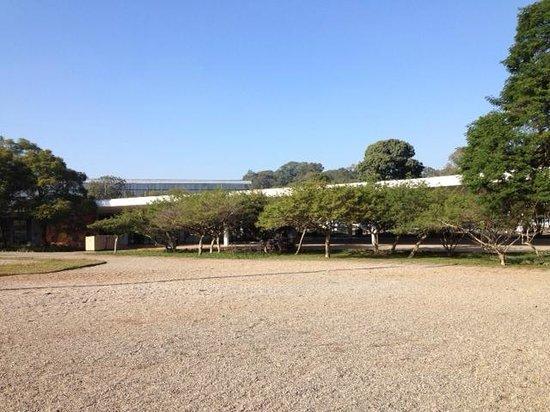 Parque do Ibirapuera: MAM - Museu de Arte Moderna from a distance
