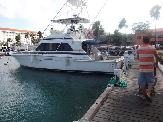 the sea iesta picture of mahi mahi fishing charters
