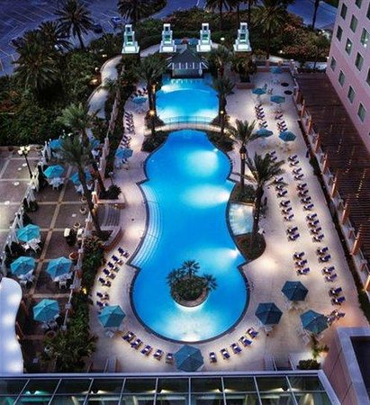 Moody Gardens Hotel Spa & Convention Center: Pool view
