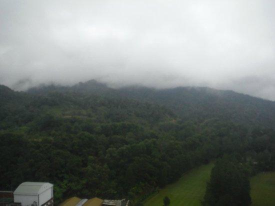 Awana Hotel: View