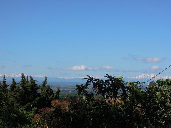 Domaine de la Bade : Pyreneeën op de achtergrond
