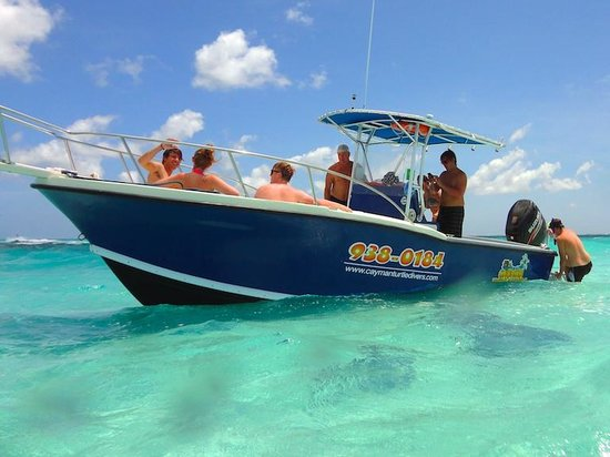 Cayman Turtle Divers: Wall-Nut