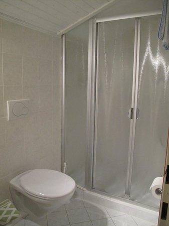 An der Linde: En-suite shower room