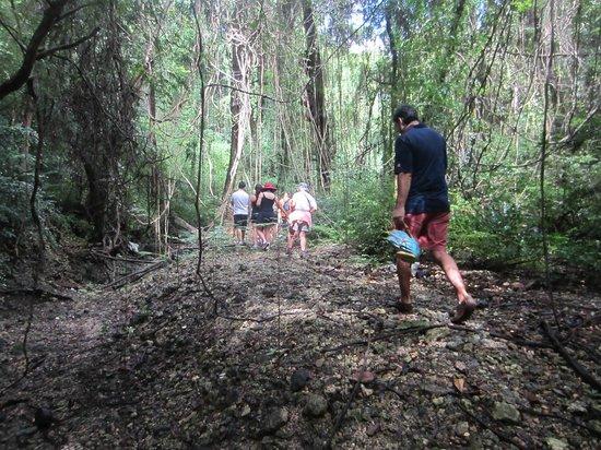 Eco Adventures Barbados - Day Tours