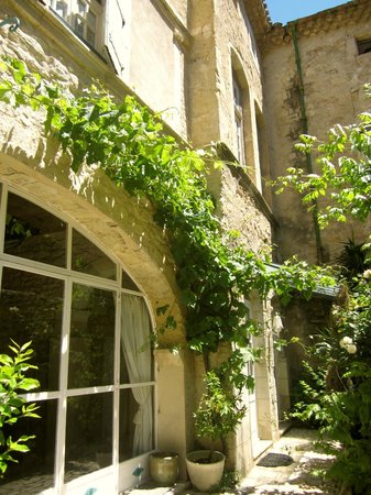 Chateau de Murviel : Creeping vines on the South Wing