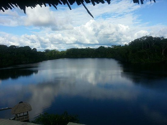 La Selva Amazon Ecolodge: View of lake from lodge