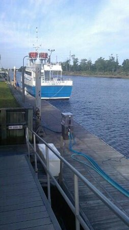 Voyager Deep Sea Fishing Dolphin Cruises Fleet