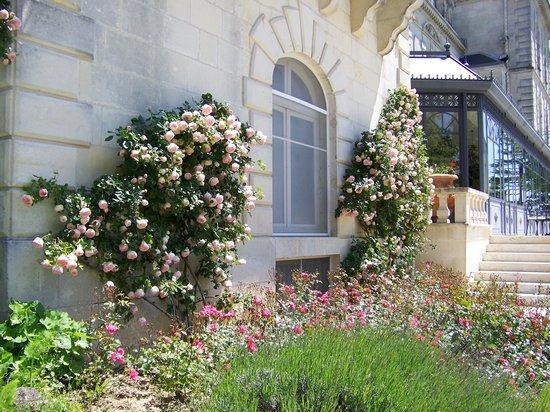 Chateau de Mirambeau : June roses at chateau mirambeau
