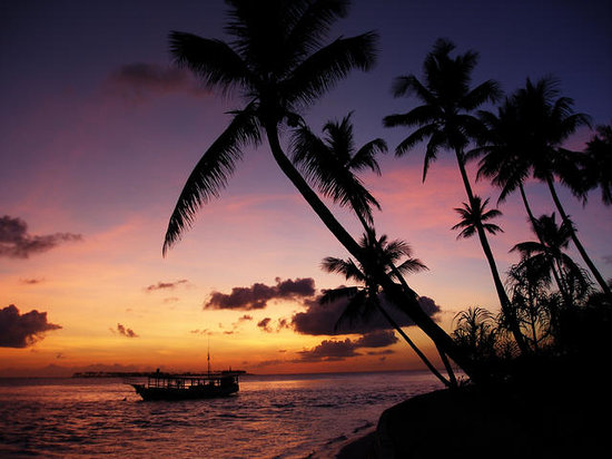 Wakatobi Dive Resort: sunset