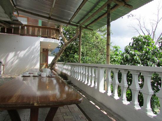 El Quetzal de Mindo: View from the back porch