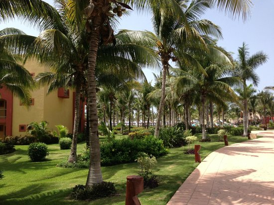 Barcelo Maya Tropical: Entire Grounds Are Beautiful