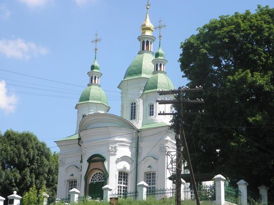 Vasylkiv, Ukraine: View at domes from town