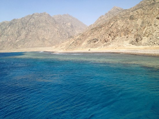 Ibis Styles Dahab Lagoon Hotel : barrière de corail