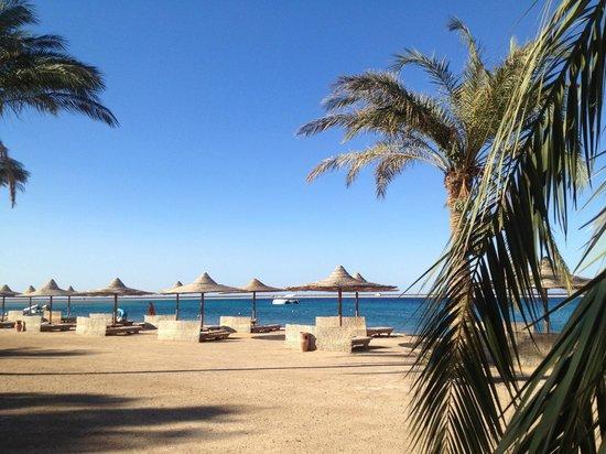 Ibis Styles Dahab Lagoon Hotel : plage