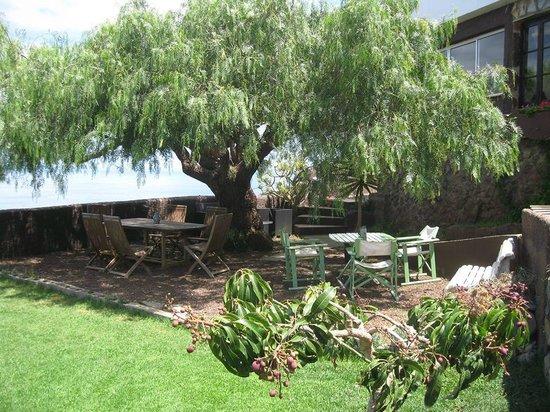 Casa Libe: Jardin / Garden