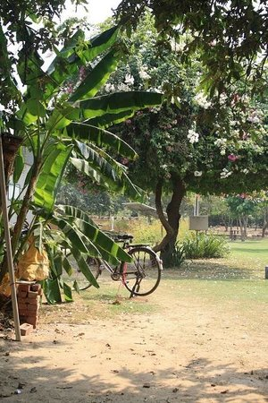 Roots Cafe In The Park Gurgaon